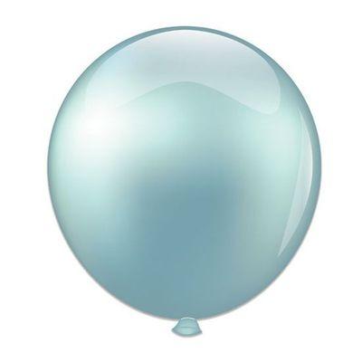 Ballonnen mint (61cm)