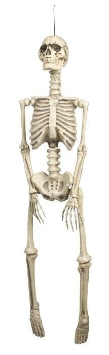 Foto van Skelet (92 cm)