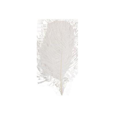 Struisveer 28-32 cm wit