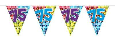 Mini Vlaggenlijn Bday Blocks 75 jaar