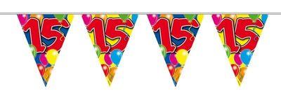 Vlaggenlijn balloons 15 jaar 10M