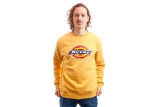 Foto van Dickies Crewneck Pittsburgh Sweatshirt Apricot DK220241APR1