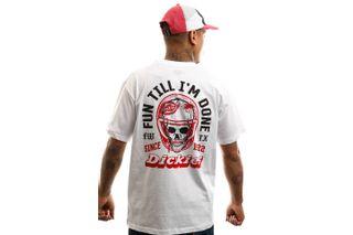 Foto van Dickies T-shirt Statham Mens Tshirt White DK0A4TNC