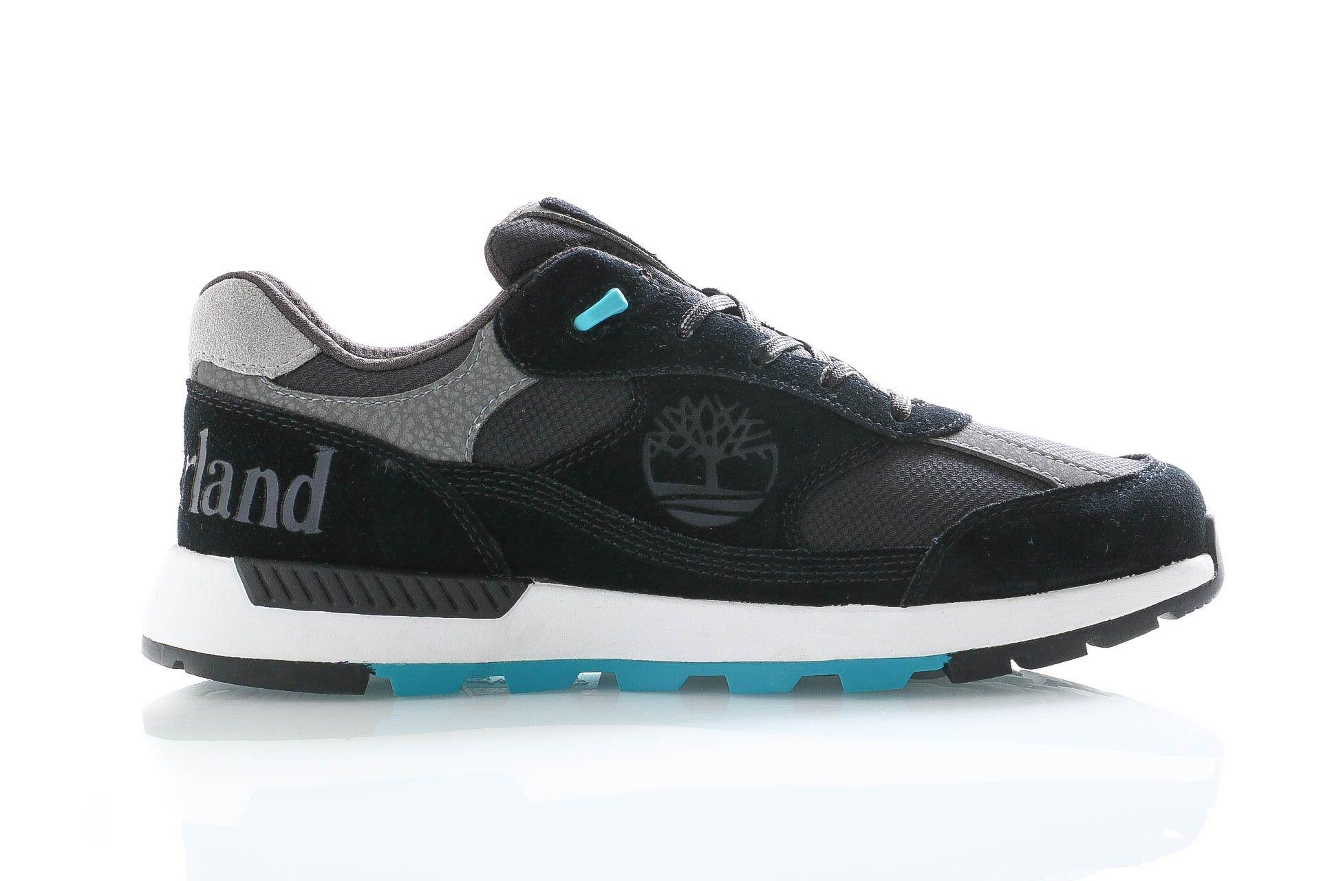 Afbeelding van Timberland Sneakers Field Trekker Low F/L Black Suede TB0A25480151