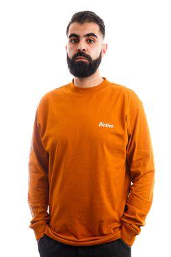Afbeelding van Dickies Longsleeve BETTLES TEE LS Pumpkin Spice DK0A4XH8B831
