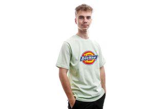 Foto van Dickies T-Shirt Horseshoe Tee Men Mint DK60075XMIN1