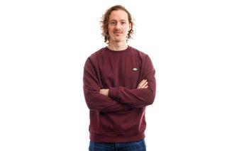 Foto van Dickies Crewneck New Jersey Sweatshirt Maroon DK220240MR01