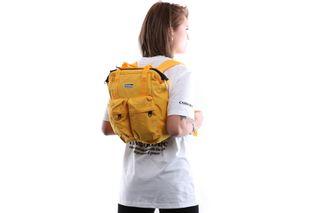 Foto van Dickies Schoudertas Haywood Backpack Dijon DK843016