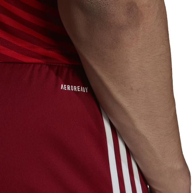 Afbeelding van FC Bayern München Short Thuis Craft Red
