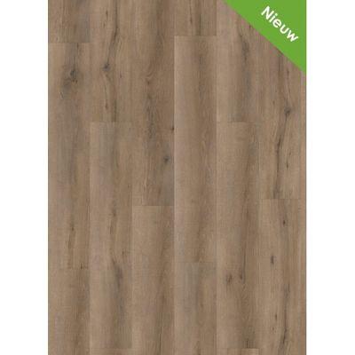 Foto van Premium Oak Mystic LF122221