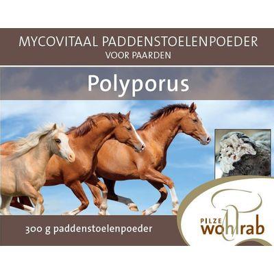 Mycovitaal Polyporus poeder voor dieren