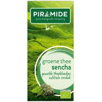 Piramide Groene thee sencha eko