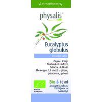 Physalis Eucalyptus globulus bio