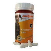 Amiqure Hond glucosamine big size