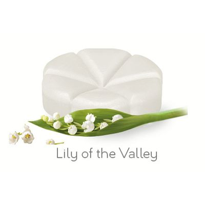 Creations Geurchips lily of the valley
