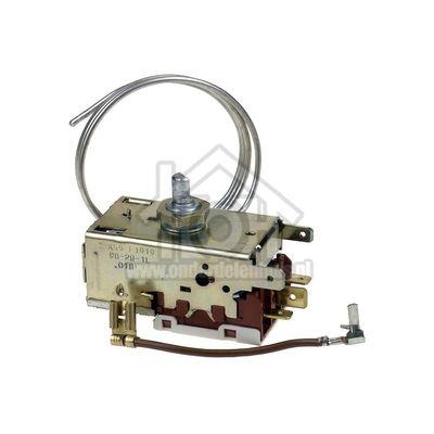 Bosch Thermostaat K59 L1919 KI17-18-KTR 1844-KIR 2502 00167223