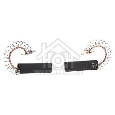 Bosch Koolborstel Set, 12 x 5 met veer/klem WAE27160, WAE281M1 00605694
