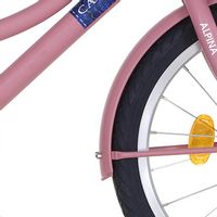 Alpina spatb set 18 CG soft pink matt