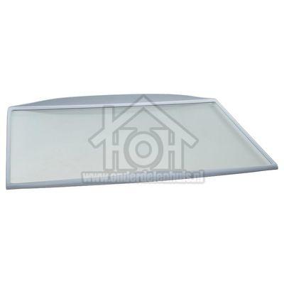 Whirlpool Glasplaat 460x310mm. Compleet met randen WM1500, KRA1601, WBE2311 482000008872