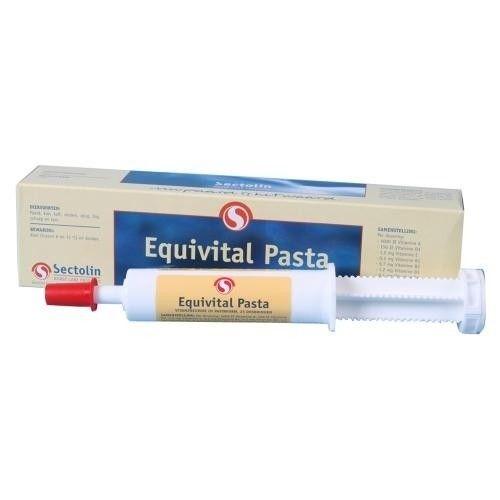 Equivital vitaminepasta paard