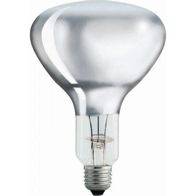 Warmtelamp / infrarood lamp Philips 250Watt wit 10 stuks