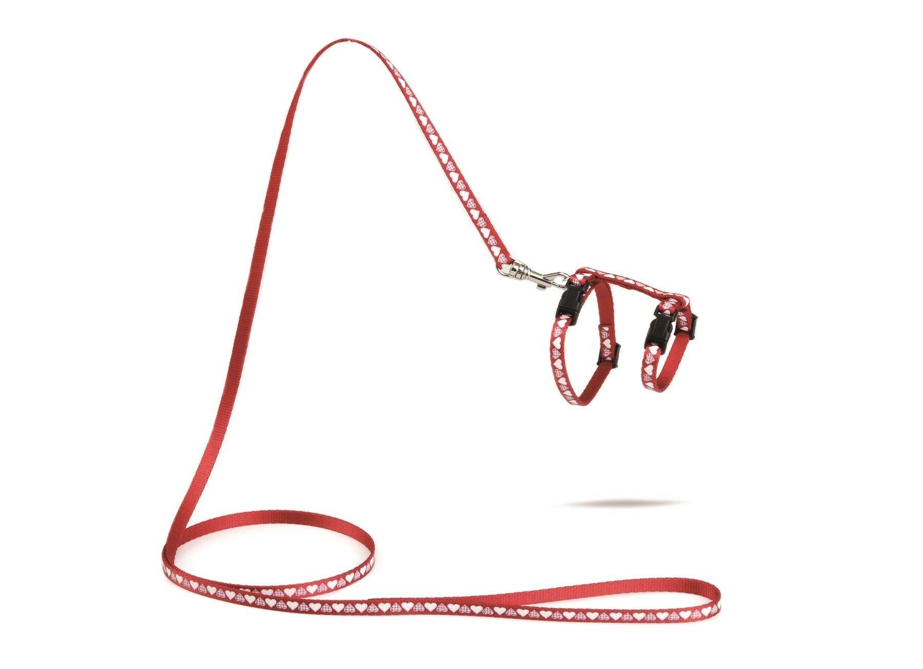 Kittentuigje Hearts rood met 120cm looplijn Beeztees