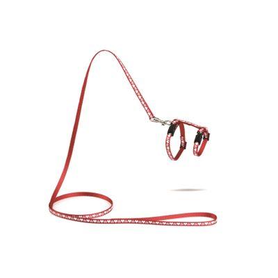 Foto van Kittentuigje Hearts rood met 120cm looplijn Beeztees
