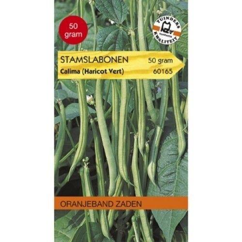 Stamslabonen Calima (Haricots Verts) Oranjeband