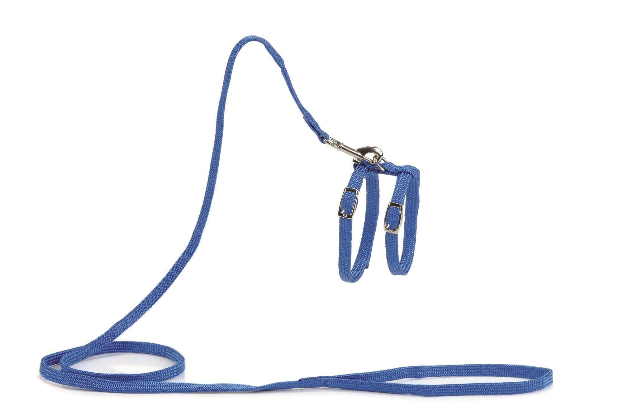 Kattentuig met 130cm looplijn blauw Beeztees
