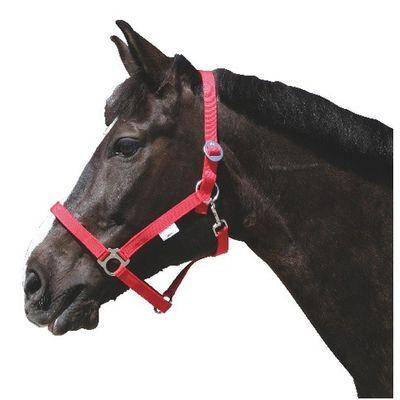 Foto van Paarden / pony halster nylon Classic rood