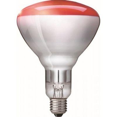 Warmtelamp / infrarood lamp Philips 150Watt rood 10 stuks