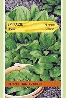 Foto van Spinazie Nores 75 gram Oranjeband