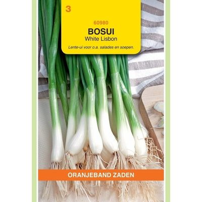 Bosui White Lisbon Oranjeband