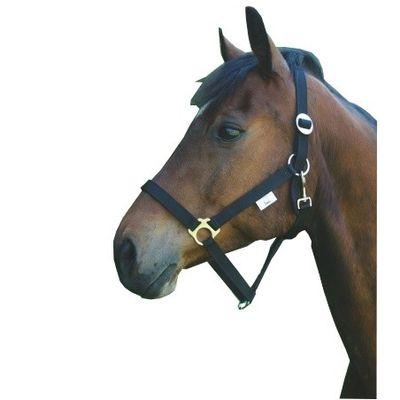 Foto van Paarden / pony halster nylon Classic zwart