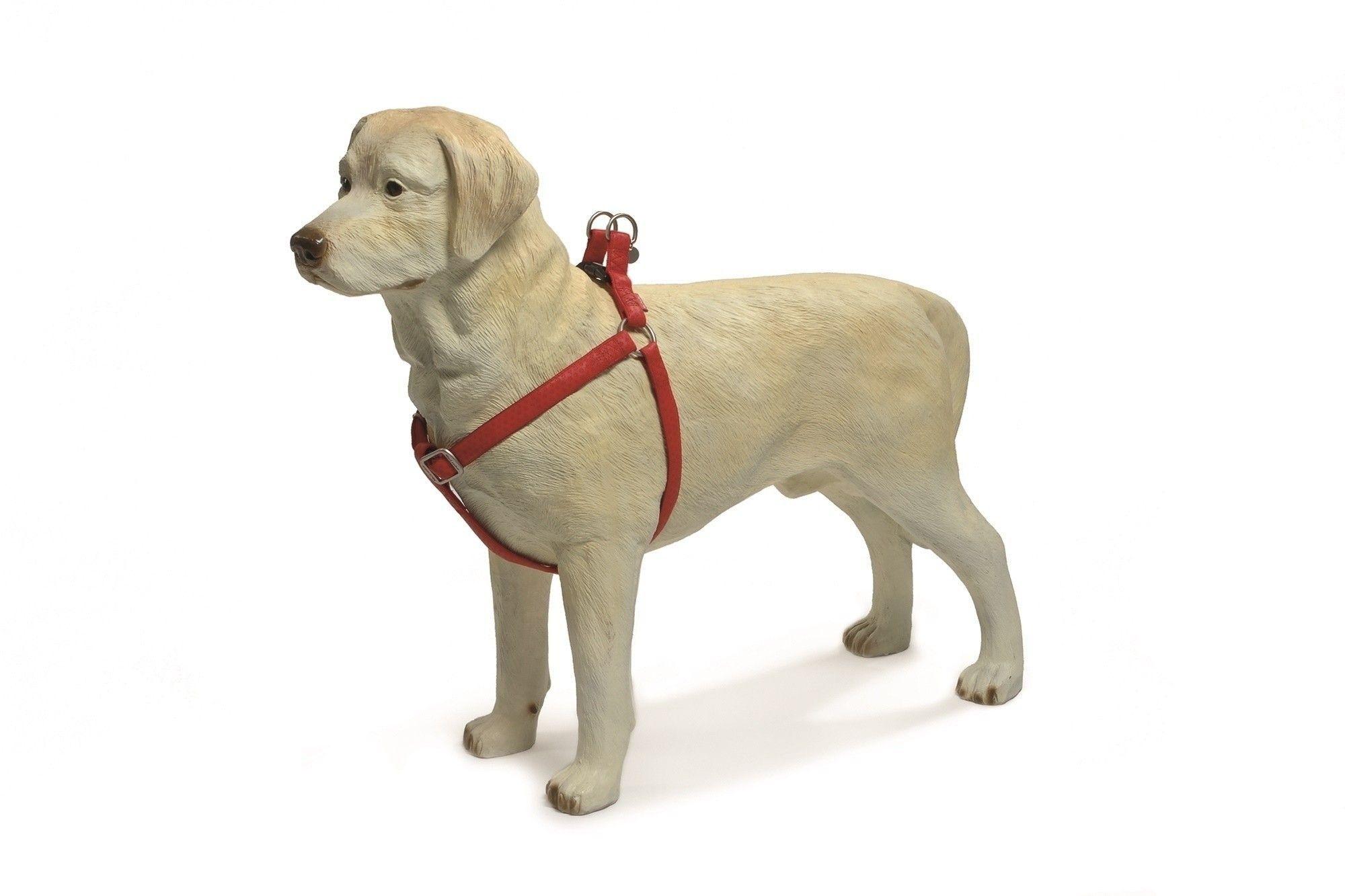Honden borsttuig Macleather Beeztees rood
