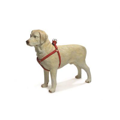 Foto van Honden borsttuig Macleather Beeztees rood