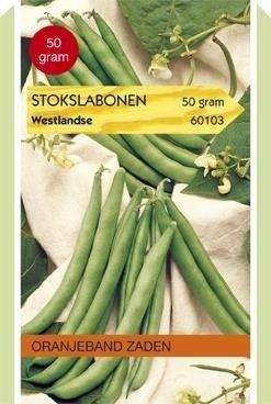 Foto van Stokslabonen Westlandse Oranjeband