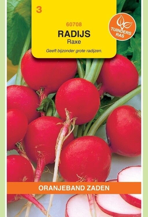 Radijs Raxe Oranjeband