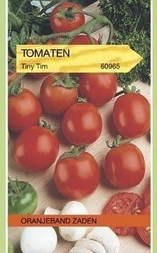 Foto van Tomaten Tiny Tim Oranjeband
