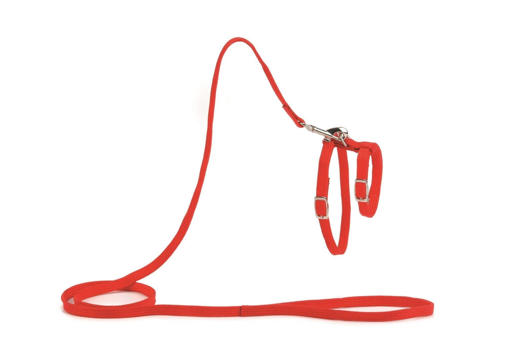 Kattentuig met 130cm looplijn rood Beeztees