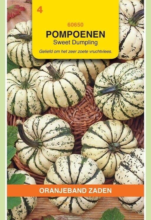 Pompoenen Sweet Dumpling Oranjeband