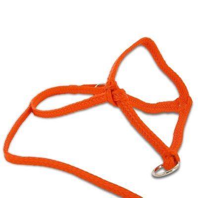 Foto van Kalver halster nylon oranje