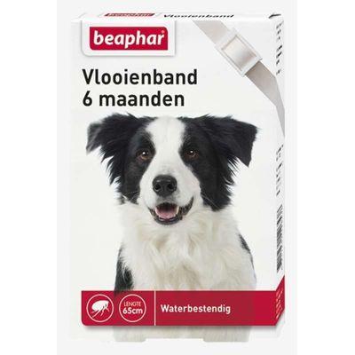 Foto van Beaphar vlooienband hond wit