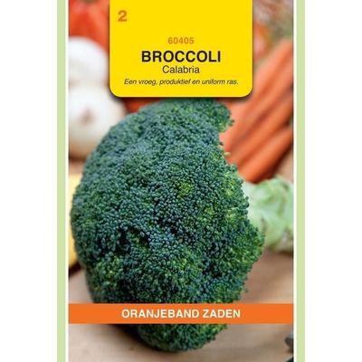 Foto van Broccoli Calabria. Oranjeband