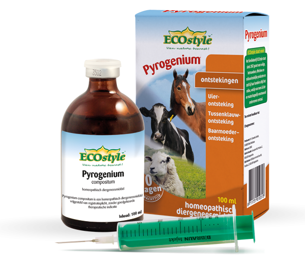 Pyrogenium compositum Ecostyle 6-pack 6x100ml