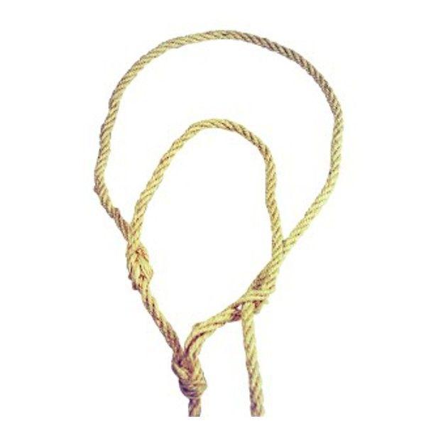 Stierenhalsters \ koehalster met touwtje 12 stuks