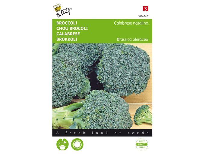 Afbeelding van Broccoli Calabrese natalino, groen
