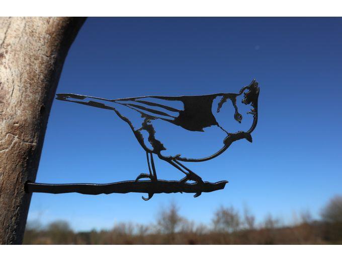 Afbeelding van Vogel Cortenstaal - Kuifmees