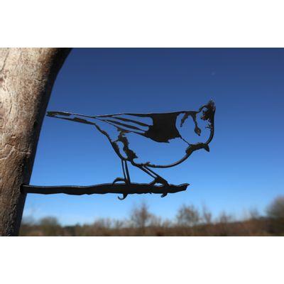 Foto van Vogel Cortenstaal - Kuifmees
