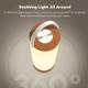 Afbeelding van TaoTronics TT-DL071 LED Lamp lantern
